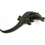 Figurina Sarchosuchus Mojo
