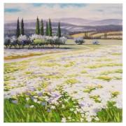 Ölgemälde Blumenlandschaft, 100% handgemaltes Wandbild Gemälde XL, 80x80cm ~ Variantenangebot