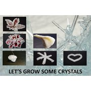 Crystal Growing Science Kit- Safe And Easy to Use. Everything You Need to Grow Different Crystal Shapes And Colors...