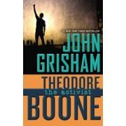 Theodore Boone: The Activist, Hardcover