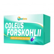 Coleus Forskohlii 300mg 60 Caps