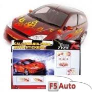 SET AUTOCOLANTE COMPLET FLACARI CD C2006-1