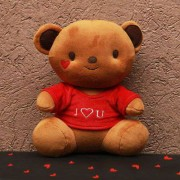 Cute 15 Inch Brown Teddy Bear wearing I Love You T-shirt