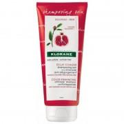 Klorane (Pierre Fabre It. Spa) Klorane Shampoo trattante al Melograno 200ml
