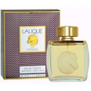 Lalique Pour Homme Equus eau de toilette para hombre 75 ml