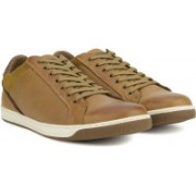 Steve Madden Sneakers For Men(Tan)