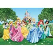 Ag Design Disney Princesses Fotobehang 4D (AG Design)