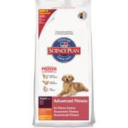 Hill's SP Canine Adult Large Breed cu Pui 3kg