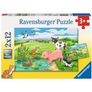 Puzzle Animale La Ferma, 2X12 Piese Ravensburger