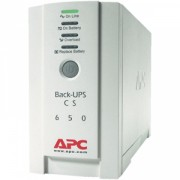 UPS APC Offline 500VA BK500EI
