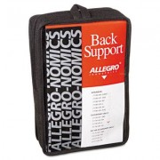 Economy Back Support Belt, Large, Black