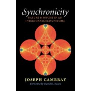 Synchronicity: Nature and Psyche in an Interconnected Universe