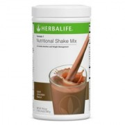 Herbalife Formula 1 (Chocolate Flavour) - 500 Grams