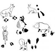 Zwierzęta i ich ślady - 12 pieczątek