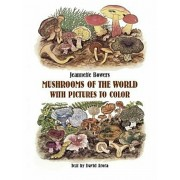 Mushrooms of the World with Pictures to Color, Paperback/Jeannette Bowers