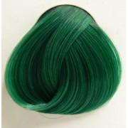 szín haj DIRECTIONS - Apple Green