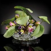 Aranjament floral CROWN LOTUS