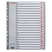 39.95 Esselte Pärmregister MAXI - grå. Flera varianter 10 pcs 1-20 - maxi