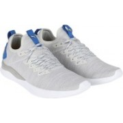 Puma IGNITE Flash evoKNIT Sneakers For Men(Grey)