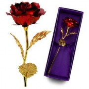 Beautiful 24K Red Golden Rose With Gift Box And a Nice Carry Bag - Best Gift to Express love on Valentine's Day