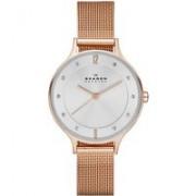 Skagen Horloge Albuen SKW2151