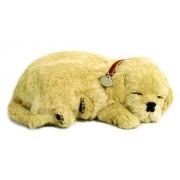 Perfect Petzzz XP91-02 Huggable Golden Retriever Puppy