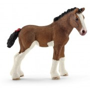 Animale - Clydesdale Feline