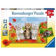 PUZZLE AVENTURA PISICUTELOR, 2X12 PIESE - RAVENSBURGER (RVSPC07626)