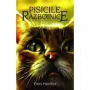 Pisicile Razboinice. Noua profetie. Amurg vol.11
