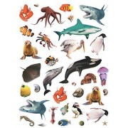 Photographic Animal Stickers ~ Ocean Animals (35 Stickers, 1-1)