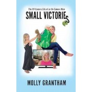 Small Victories: The Off-Camera Life of an On-Camera Mom, Paperback
