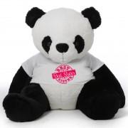 5 feet big panda teddy bear wearing special Best Sister T-shirt