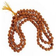 Lab certified rudraksha beads maala natural shiv moksha beads mala by Jaipur Gemstone