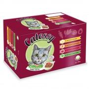 Catessy sobres con verdura en gelatina - 4 surtidos diferentes: 60 x 100 g