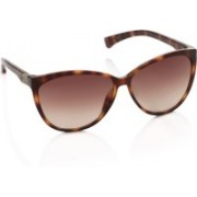 CK Jeans Cat-eye Sunglasses(Brown)