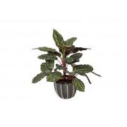 Intergard Plantes artificielles Galatea