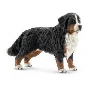Animal - cățea câinelui de munte din Berna