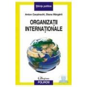 Organizatii internationale - Anton Carpinschi Diana Margarit