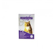 Advantage Cats over 10lbs (Purple) 6 Doses + 1 Free