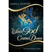 When God Comes Down: An Advent Study for Adults, Paperback