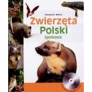 Zwierzęta Polski + CD