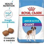 15 kg Giant Junior Active Royal Canin pienso para perros