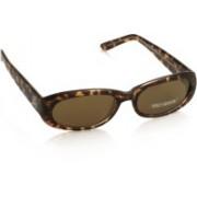 Harley Davidson Oval Sunglasses(Brown)