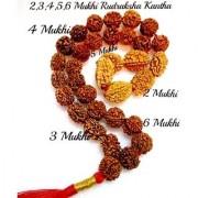 RUDRAKSHA 2 3 4 5 6 MUKHI JAPA MALA KANTHA NEPALESE 32+1 COLLECTOR BEADS YOGA