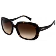 Coach HC8178 Sunglasses 512013