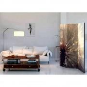 Motiv Paravent im Pusteblumen Design Grau und Braun
