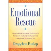 Emotional Rescue: How to Work with Your Emotions to Transform Hurt and Confusion Into Energy That Empowers You, Hardcover