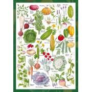 Puzzle Schmidt - Gradina de legume, 1.000 piese (59567)