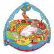 Galt Toys Playnest and Gym Farm 381004060
