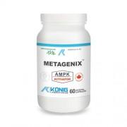 Metagenix 60 capsule de origine vegetala